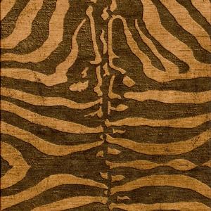 Furius Africanus (Visualization)