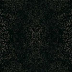 Aquarius dark