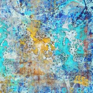 Disatrus blue rush