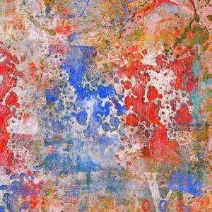 Disatrus red blue