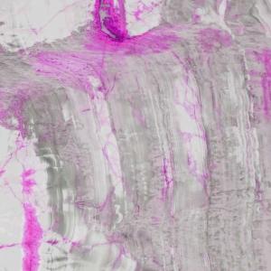 ONYX Ravus grey pink